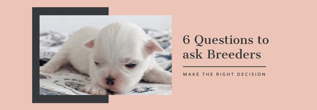 Breeder Questions