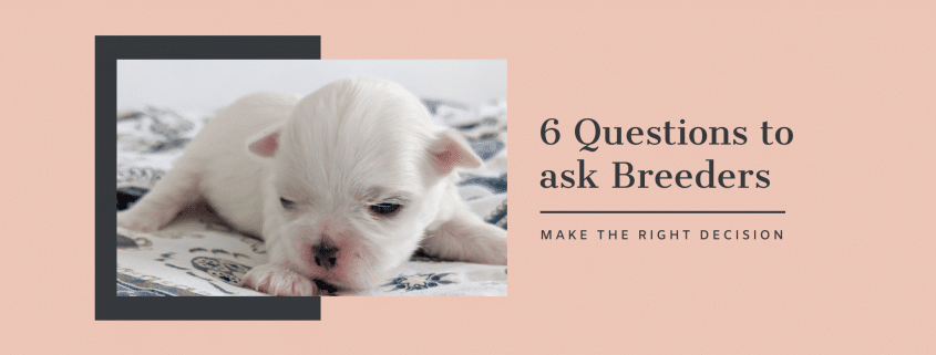 Breeder Questions